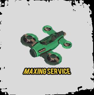 SBA Maxing Service